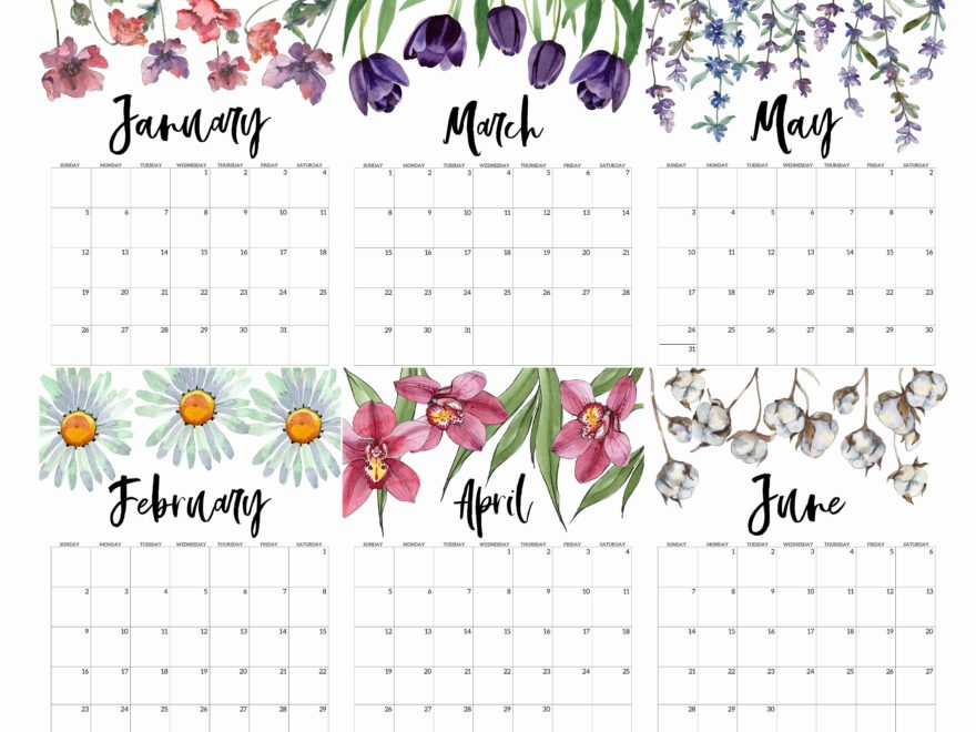 Cute January to June Calendar 2020